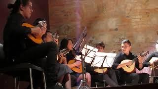 MI COPETONCITA Y YO (Pasillo) - ITINERANTE TRÍO RECITAL IV ANIVERSARIO