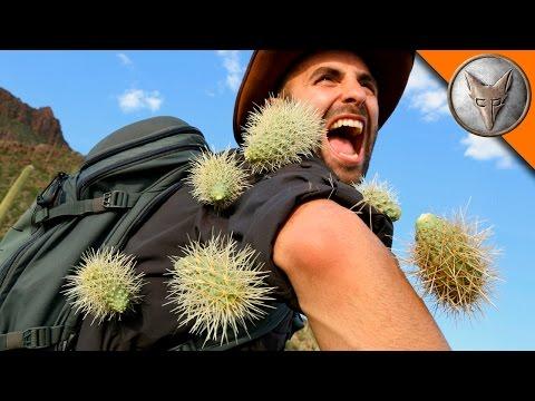 EXTREME Cactus Attack