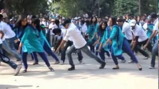 Rag Day Flash Mob: University of Dhaka | AIS 15th Batch| BBA 2012
