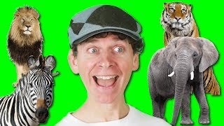 Animal Names Song with Matt | Wild Animals For Children, Learn English Kids