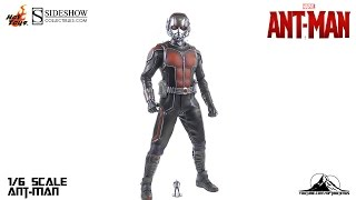 Hot Toys 1/6th scale Ant-Man Video Review
