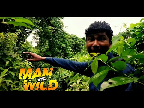 Xxx Mp4 Wild Survivor Hindi New 2018 Episode Part 3 Full Episodes With Rajesh 3gp Sex