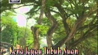 Wilson - Kena Jayau Tubuh Nuan