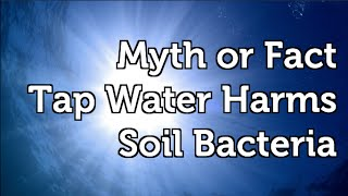 Garden Myth or Fact Does Tap Water Harm Beneficial Soil Bacteria?