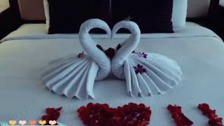 Honeymoon bed decoration / example swan  /folding towel