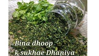 ₹10 ho ya ₹1000 par ab Dhaniya hoga apke ghar pure saal/How to store coriander for long time