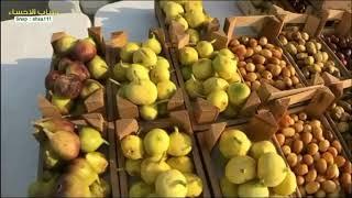 سعوديون يبيعون الفواكه الموسمية ! | سناب الاحساء