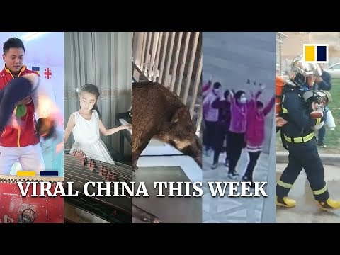 Viral China this week: a talented young musician, 'aunties' taking over a hotel lobby and more