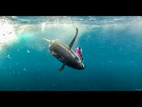 Last Minute Bluewater Tuna Full Episode