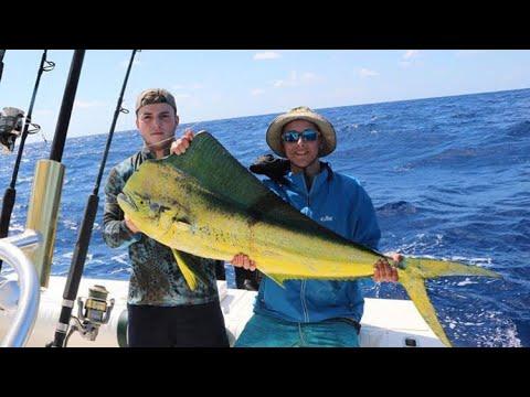 Xxx Mp4 Mahi Mahi Fishing How To Catch Mahi Mahi 3gp Sex