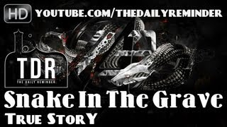 Snake In The Grave - True Story ᴴᴰ ┇ Powerful Speech ┇ The Daily Reminder ┇