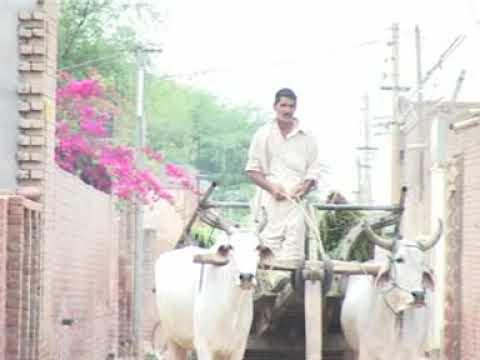 Swachh Bharat Mission-Gramin - Mohammadpur Salarpur - Nirmal Bharat Abhiyan - TSC - DOST