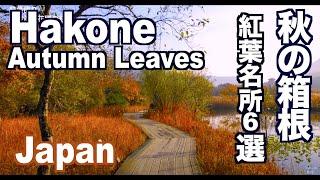 Autumn colors in Hakone 秋の箱根の紅葉名所 箱根観光 紅葉便り 日本の秋
