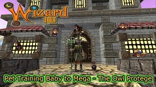 Wizard101 Pet Training The Owl Protege Baby to Mega