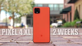 Google Pixel 4 XL Review: My 2 Week Experience