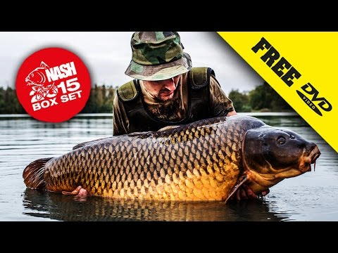 Xxx Mp4 NASH 2015 DVD BOX SET Carp Fishing Subtitles Complete Movie In 1080P 3gp Sex