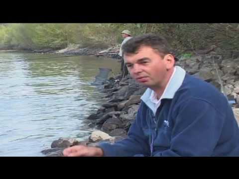 Cralusso folyóvízi úszók