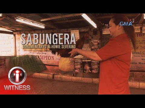 I Witness Sabungera a documentary by Howie Severino full episode