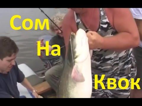 ютуб не диалоги о рыбалке