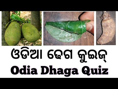 Xxx Mp4 Odia Dhaga Quiz 2 Joke ଓଡିଆ ଢେଗ କୁଇଜ୍ ଓଡିଆ ଢେଗ ଢମାଳି ପ୍ରଶ୍ନ ଉତ୍ତର 3gp Sex