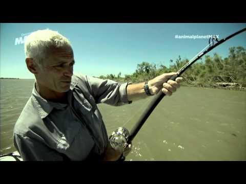 Asesino Silencioso Monstruos Río Parte 2