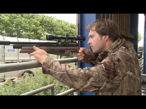 The Airgun Show – hunting doves, feral pigeons and rats on the farm, plus the Cometa Orion BP bullpu