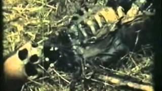 Vita vya Kagera (Kagera War) - Part 1 of 4