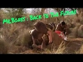 Download Video Download Mr Bones to the future !!! :(hindi dubbed) part 2 3GP MP4 FLV