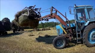 МТЗ 80 кун  Работа на сенокосе, погрузка сена.