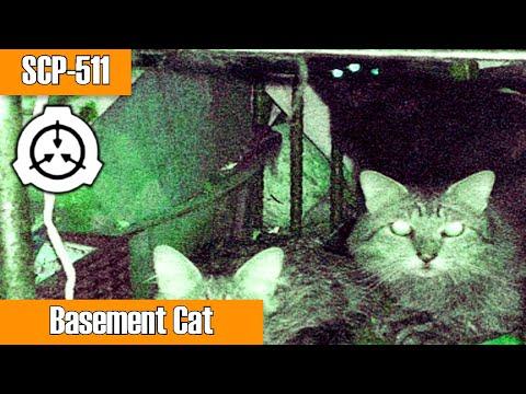 SCP-511 Basement Cat | Object Class Euclid