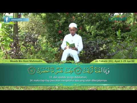 Murattal Al-Qur'an Anak: Surah At-Takwir by Muadz Bin Roni Mahmud