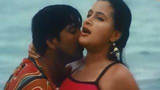 Shatruvu Movie || Va Vaareva Video Song || Naveen, Navneet Kaur