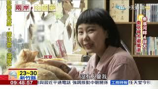 """2019.04.21兩岸中國夢/陸版""""解憂雜貨店"""" 3隻療癒貓掌櫃"""