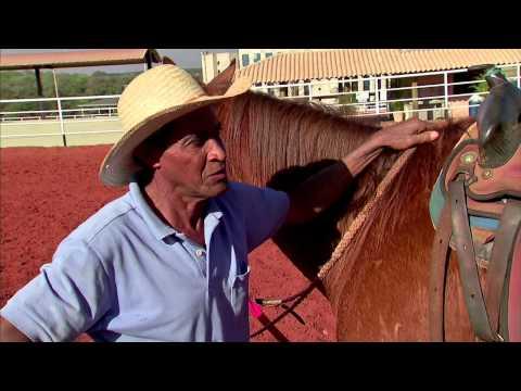 O Destemido Domador de Cavalos Barretos 2010