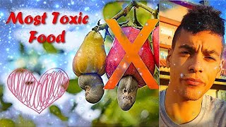 ATENTION STOP EVERYTHING 🥜 ! The Most TOXIC Food on Earth