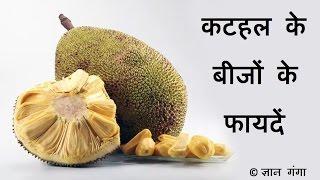 कटहल के बीजों के फायदें Kathal ke Beejon ke Fayde With English Subtitle