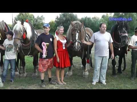 """Furmanské preteky o """"Zlat� Kantár � utina 2013 3 časť"""