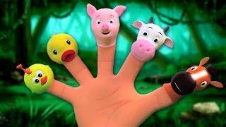 Familia dedo en español para niños y bebés   Rimas infantiles para niños