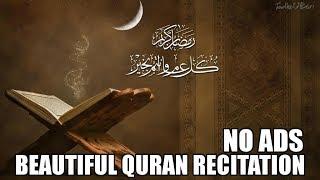 Beautiful Quran Recitation - 10 Hours | No Ads
