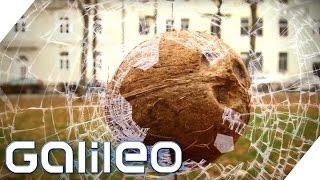 Gesund und lecker - Was kann die Kokosnuss? | Galileo | ProSieben