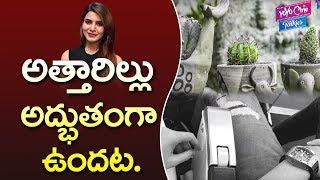అత్తారిల్లు అద్భుతంగా ఉందట | Samantha Akkineni & Naga Chaitanya New House | YOYO Cine Talkies