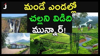 Places to Visit in Munnar   Munnar is the Most Beautiful Place to Visit in Summer