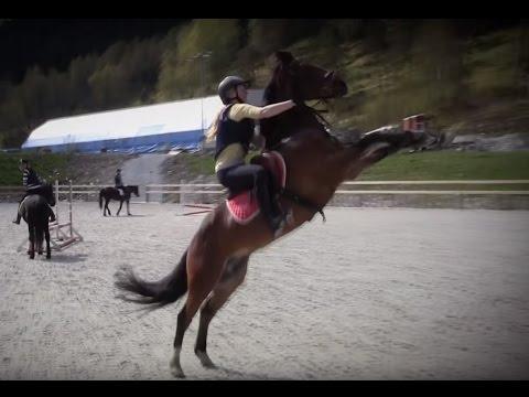 Xxx Mp4 My Crazy Horse S Journey 3gp Sex