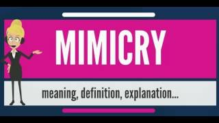 What is MIMICRY? What does MIMICRY mean? MIMICRY meaning, definition, explanation & pronunciation