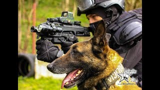 K9 Swat Action Video - K9 Training Slovakia