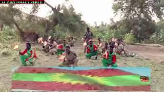 Michuu Seenaa _ Alaabaa Oromoo _ New _ Oromo music 2018