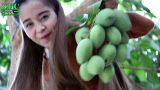 Fresh MANGO With RED CHILLI Recipe   Young Girl Eating Mango   VILLAGE FOOD FACTORY