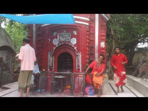 Tarapith Maha Shamshan    তারাপীঠ মহাশ্মশাণ      जय तारा माँ