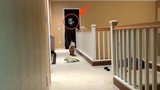 GHOST ACTIVITY CAUGHT ON CAMERA!!