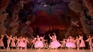 The Nutcraker Tchaikovsky  Mariinsky Theatre Gergiev